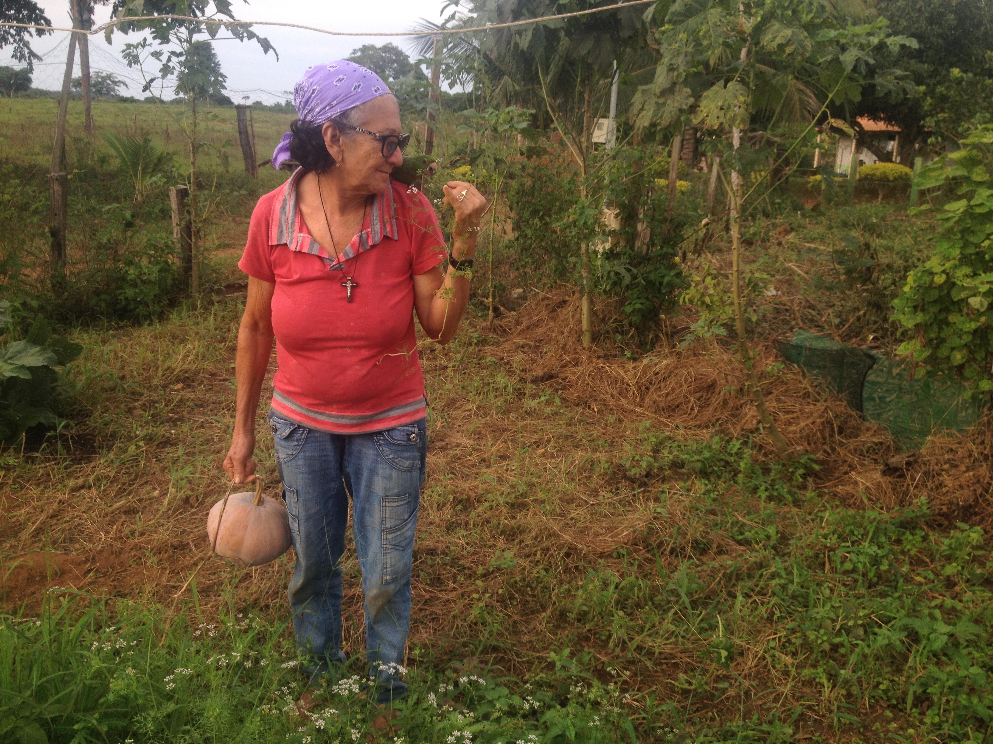 Copper Mining In Canaa Dos Carajas And Maraba Para Brazil Ejatlas