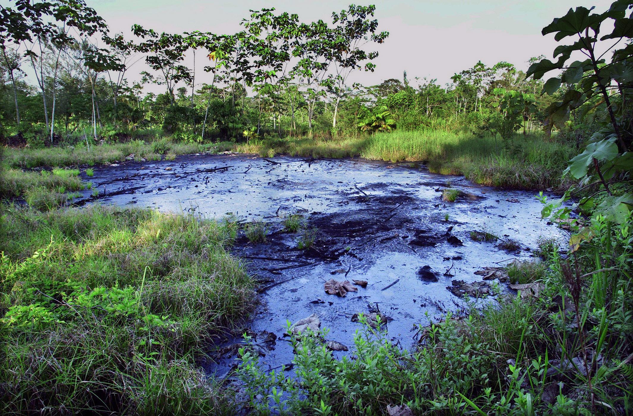 Chevron-Texaco oil extraction and legal case, Ecuador | EJAtlas on
