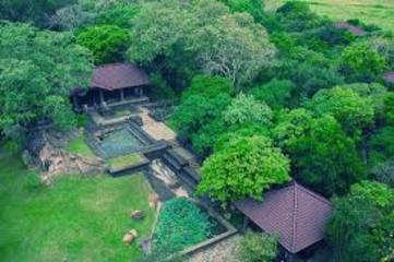 Eco Friendly Hotels Hurt The Andarawewa Forest Reserve