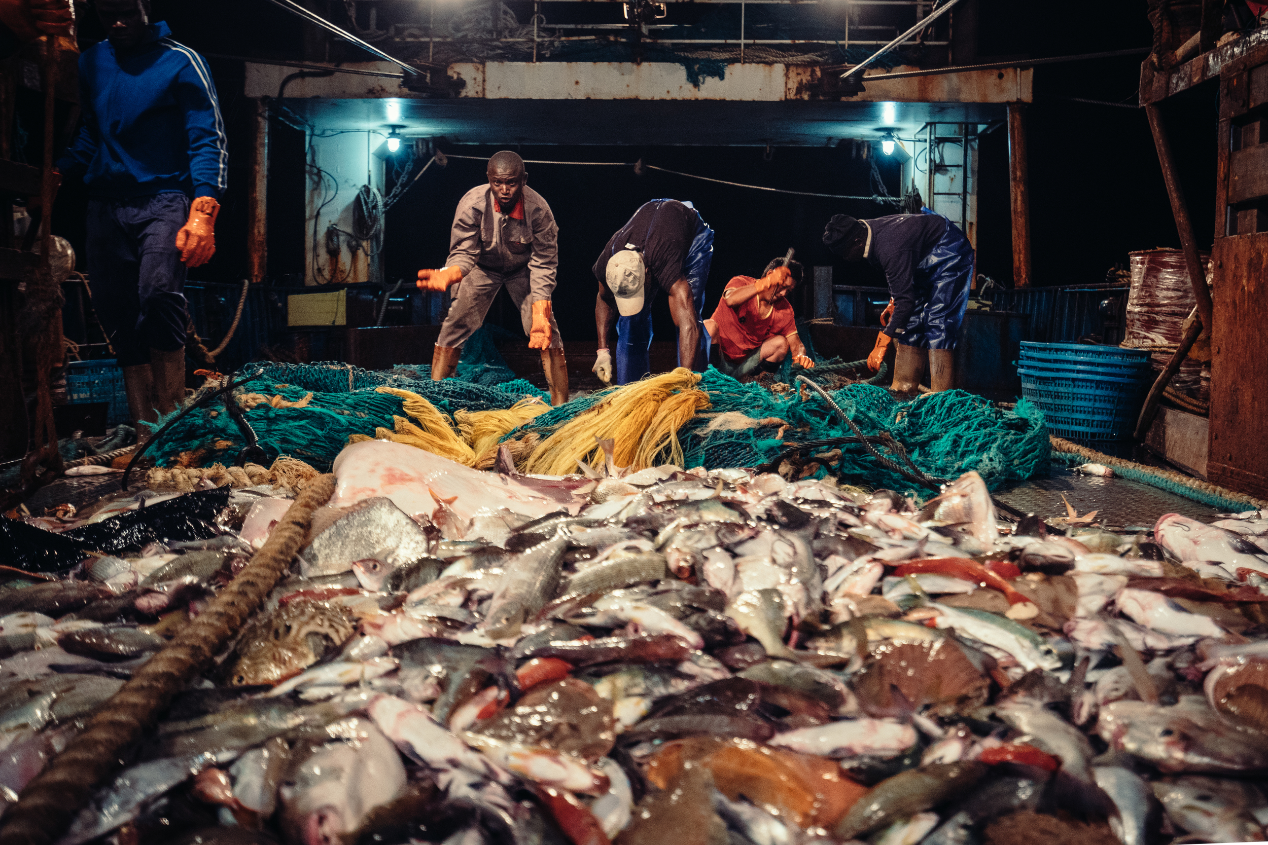 Transforming the global fishing industry