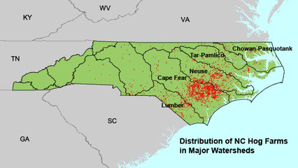 Department Of Environmental And Natural Resources Nc