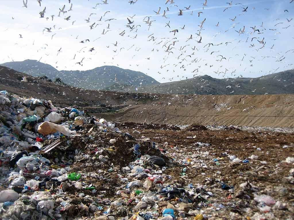 The Malagrotta Landfill And Speculation In The Galeria Valley Italy